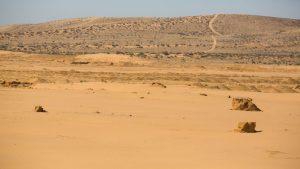 סביבת שטח תחנת הכח באשלים